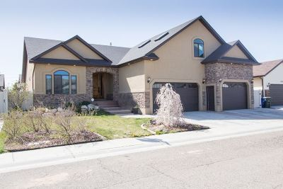 Elko County Single Family Home For Sale: 3719 Braden Way