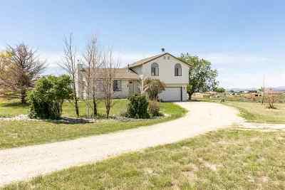 Spring Creek Single Family Home Under Cont-Take Backups: 485 Blakeland Dr