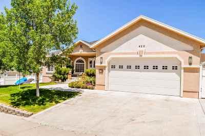 Elko Single Family Home For Sale: 426 Cottonwood Dr