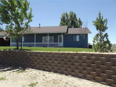 Spring Creek NV Single Family Home Sold: $220,000