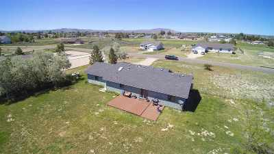 Spring Creek Single Family Home For Sale: 387 Lakeport Dr
