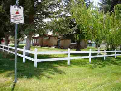 Elko County Single Family Home For Sale: 687 Rabbit Ears Rd.