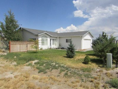 Elko County Single Family Home For Sale: 733 Hogan Street