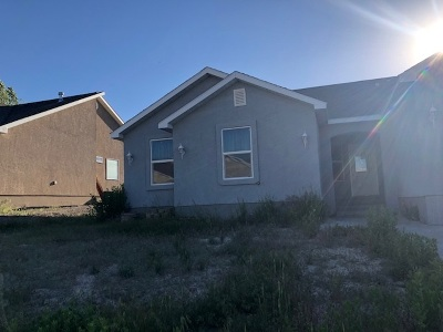 Elko County Single Family Home For Sale: 2323 Liberty Dr