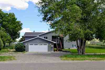Elko County Single Family Home For Sale: 370 Flora Dr