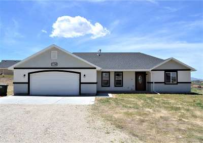 Elko County Single Family Home For Sale: 1126 Amber Way