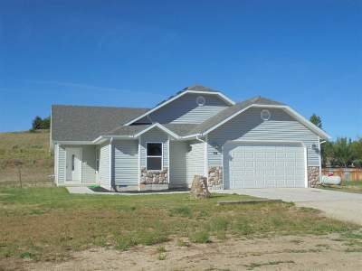 Elko County Single Family Home For Sale: 514 Abarr Dr
