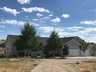 Spring Creek Single Family Home For Sale: 559 Abarr