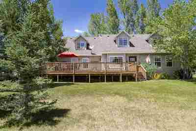Spring Creek Single Family Home For Sale: 514 Balsam Dr