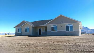 Elko County Single Family Home For Sale: 653 Spring Creek Pkwy