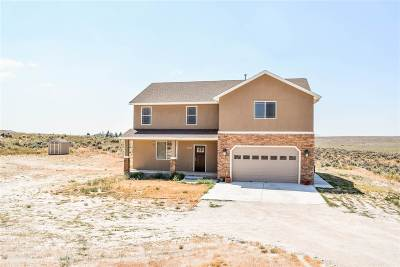 Elko County Single Family Home For Sale: 115 Deerbrush Dr