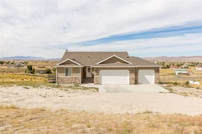 Elko County Single Family Home For Sale: 521 Trentwood Drive
