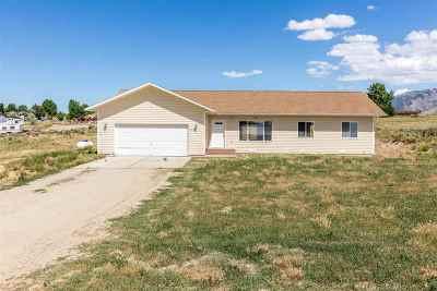 Spring Creek Single Family Home For Sale: 876 White Oak Dr