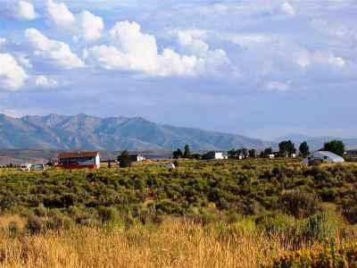 Residential Lots & Land For Sale: 16 Diamondback Plc