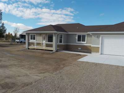 Elko County Single Family Home For Sale: 670 Palace Pkwy
