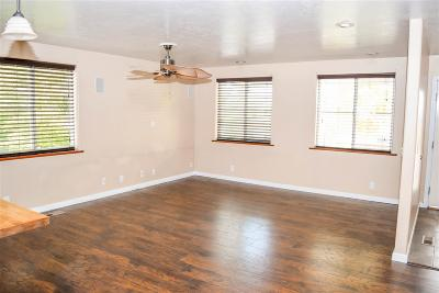 Elko Single Family Home For Sale: 649 Juniper St