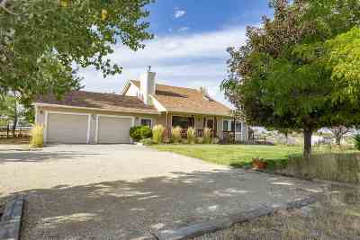 Spring Creek Single Family Home Under Cont-Take Backups: 452 Frisco Ct