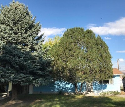 Elko Single Family Home For Sale: 1359 Southside Dr