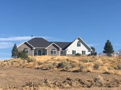 Spring Creek Single Family Home For Sale: 676 Thistle Dr
