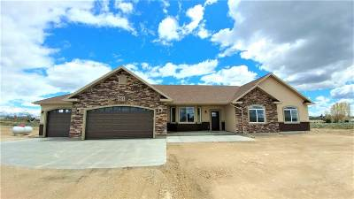 Elko County Single Family Home For Sale: 501 Palace Pkwy