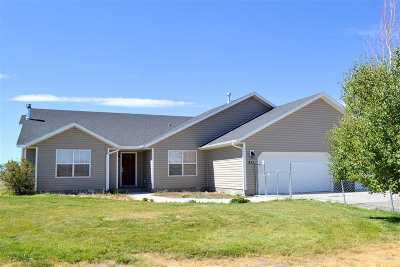 Elko County Single Family Home For Sale: 211 Flora Dr