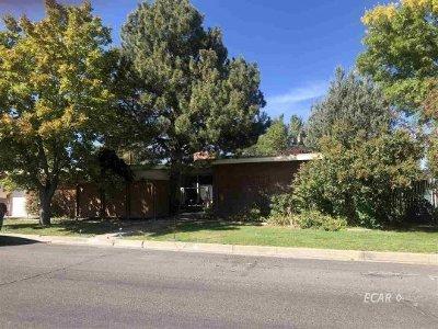 Elko Single Family Home For Sale: 117 Elm Street