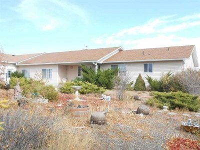 Spring Creek NV Single Family Home For Sale: $370,000
