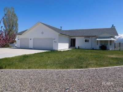 Spring Creek NV Single Family Home For Sale: $390,000