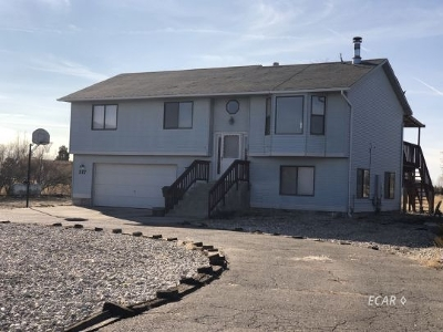 Elko County  Single Family Home For Sale: 387 Edgebrook Dr.