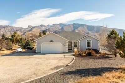 Elko County  Single Family Home For Sale: Wolf Creek Dr.