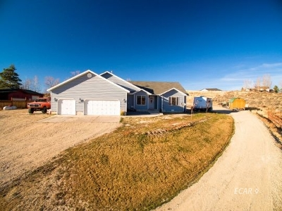 Elko County  Single Family Home For Sale: 485 Blue Jay Dr