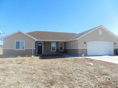 Elko County  Single Family Home For Sale: 571 Palace Pkwy