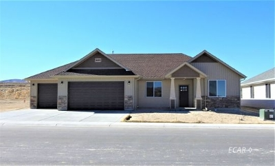 Spring Creek  Single Family Home For Sale: 789 Thorpe Dr