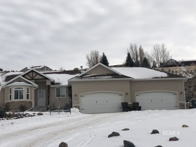 Spring Creek  Single Family Home For Sale: 445 Flora Dr.