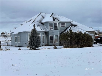 Elko County  Single Family Home For Sale: 237 Oakshire Dr