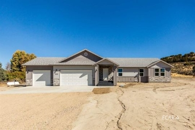 Spring Creek  Single Family Home Pending Contingency: 780 Thistle Dr