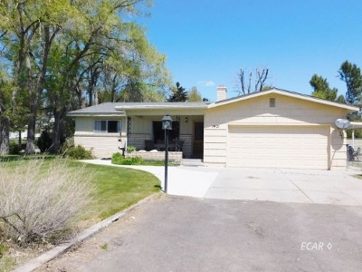 Elko County  Single Family Home For Sale: 1401 Fairway Drive