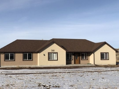 Spring Creek  Single Family Home For Sale: 768 Aesop Dr.