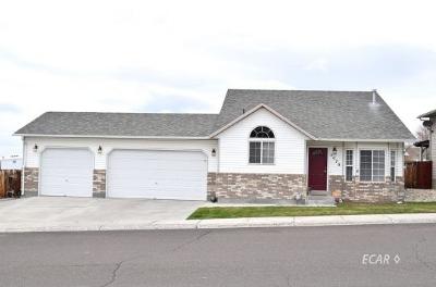 Elko Single Family Home For Sale: 3079 La Nae Dr