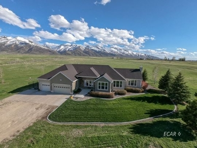 Lamoille  Single Family Home For Sale: 2052 Hog Tommy Rd