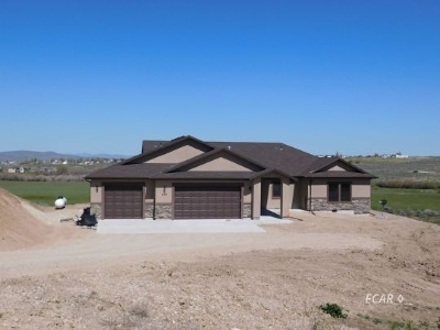 Elko County  Single Family Home For Sale: 669 Foxridge Place