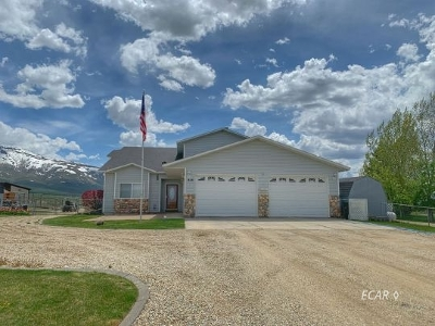 Spring Creek  Single Family Home For Sale: 818 Thorpe Dr