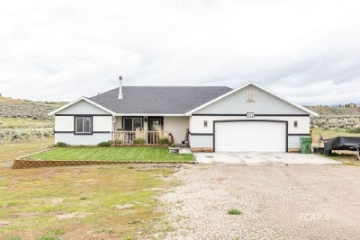Elko County  Single Family Home For Sale: 725 Parkridge Parkway