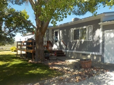 Spring Creek NV Manufactured Home For Sale: $218,000