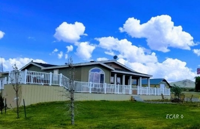 Elko Manufactured Home For Sale: 704 Forest Tow Way