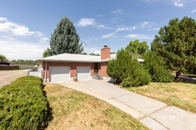 Elko Single Family Home For Sale: 105 Sage St