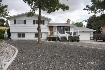 Elko Single Family Home For Sale: 946 Northside Drive