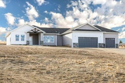 Elko County  Single Family Home For Sale: 504 Sumac Dr