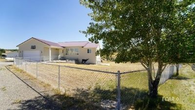 Elko County  Single Family Home For Sale: 108 Blacktone Place
