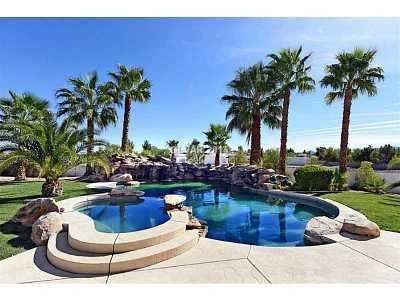 Las Vegas Single Family Home For Sale: 10550 Patrington Court